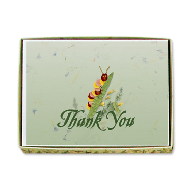 Caterpillar Thank You Cards Image
