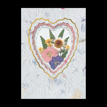 Meadow Daisy Card Image