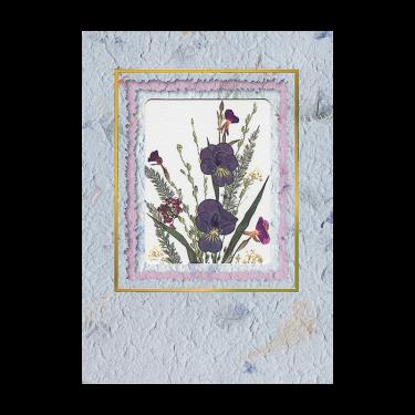 Viola Sprigs Card Image