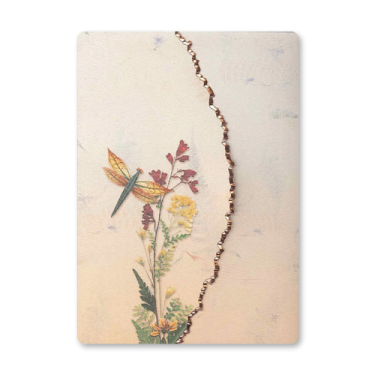 Dragonfly Garden Dweller Stationery Image
