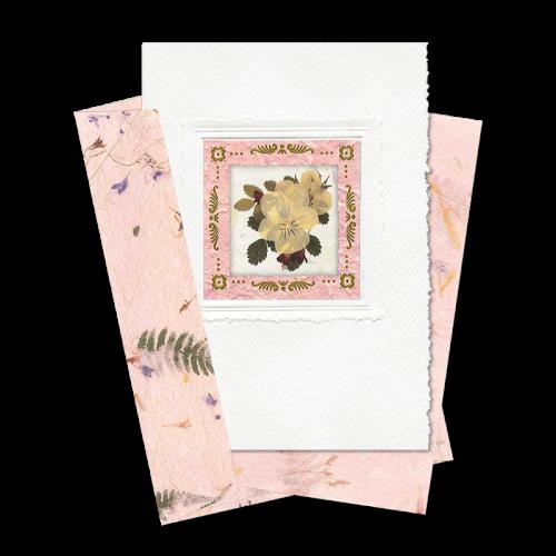 Pink Square-Framed Viola Card Image