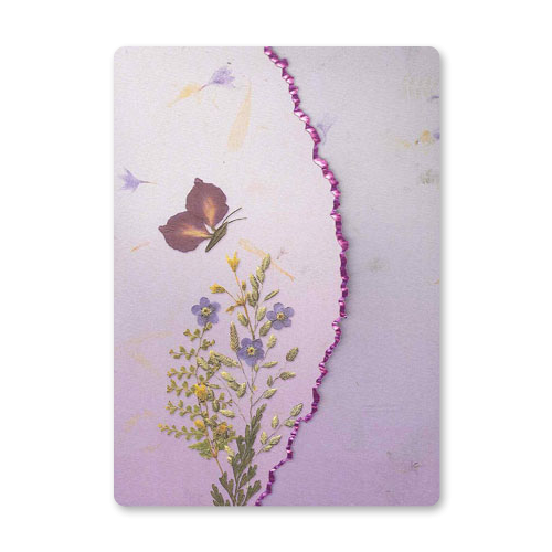Butterfly Garden Dweller Stationery Image