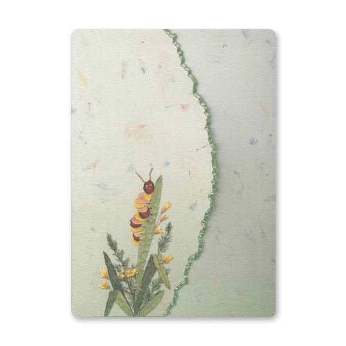 Caterpillar Garden Dweller Stationery Image