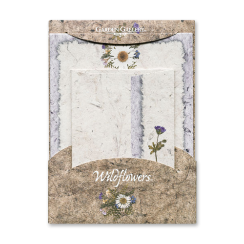 Daisy Wildflower Premium Stationery Photo