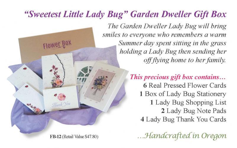 Ladybug Flower Box